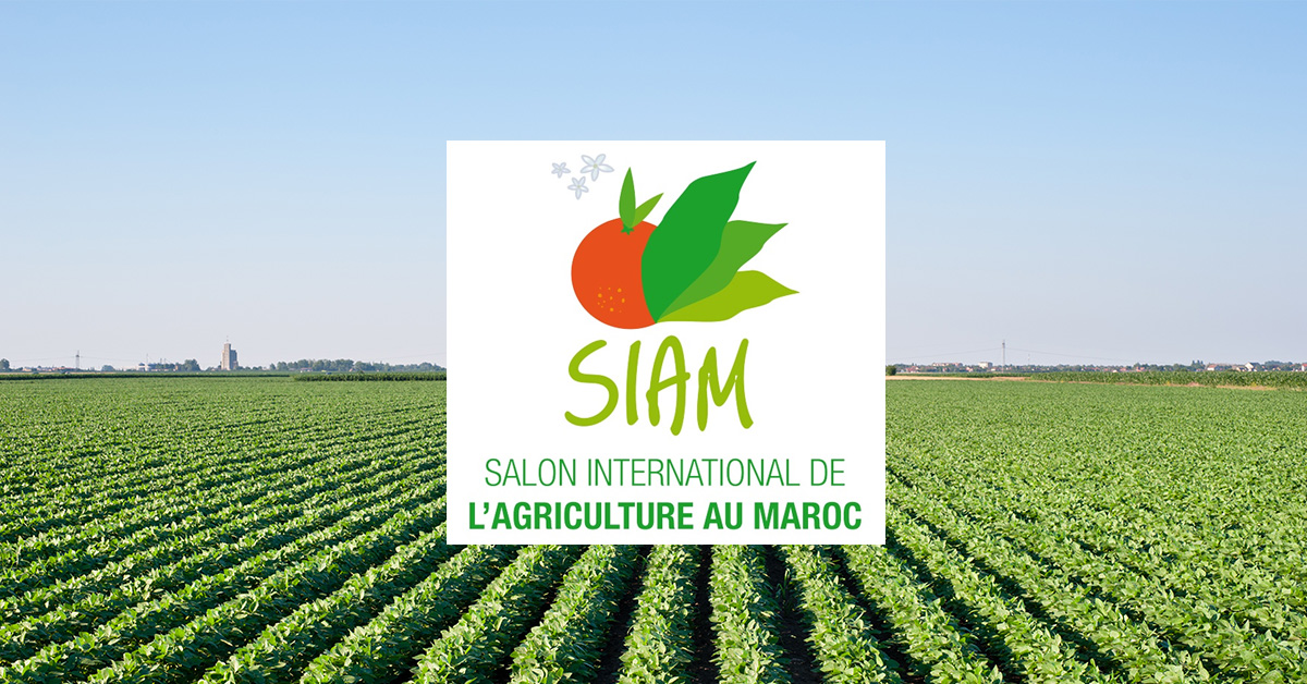 The 14th International Agricultural Fair of Morocco (SIAM)